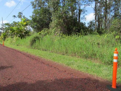 12,000 Sq Ft Lot, Low Down, : Pahoa : Hawaii County : Hawaii
