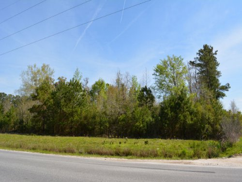 Richmond Hill Plantation Parcel F : Richmond Hill : Bryan County : Georgia