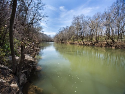 315 Acre Riverfront Farm : Columbia : Maury County : Tennessee