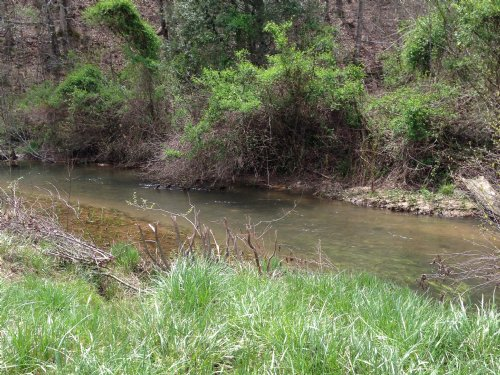25.9 Ac Trout Stream, Pasture, Mtn : Ellijay : Gilmer County : Georgia