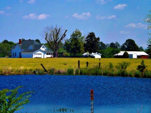 Cotton Valley Farms : Register : Bulloch County : Georgia