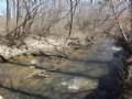 210 Acres On Turnip Creek : Brookneal : Charlotte County : Virginia