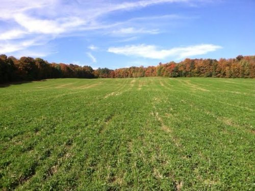 27+ Acres Bordering State Forest : Deruyter : Madison County : New York