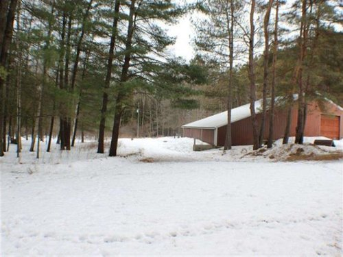 51.5 Partially Wooded Acres : Evart : Osceola County : Michigan