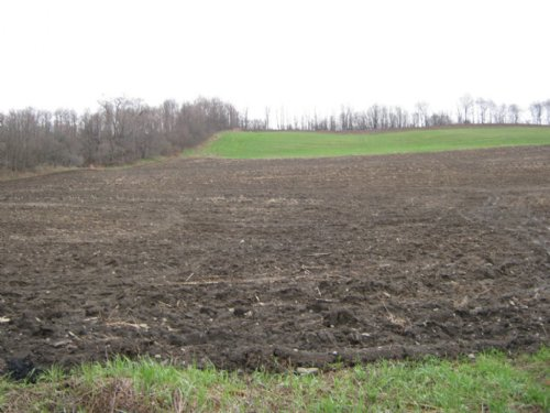 9+ Acres - Building Lot : Summerhill : Cayuga County : New York