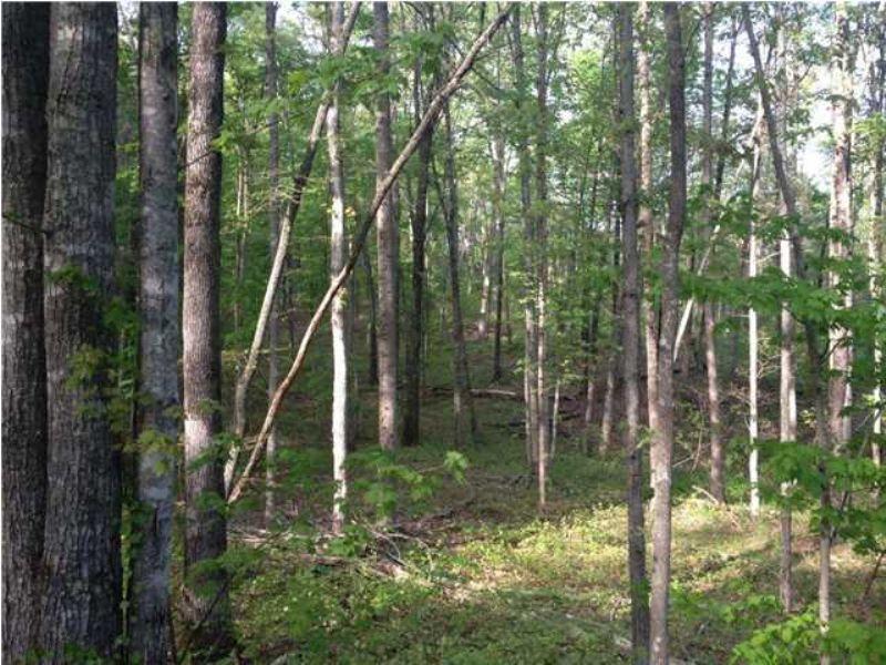 15+/-  Borders Cumberland Trail : Sale Creek : Hamilton County : Tennessee