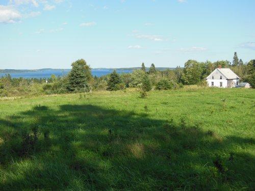 Long Cove Farm : Pembroke : Washington County : Maine