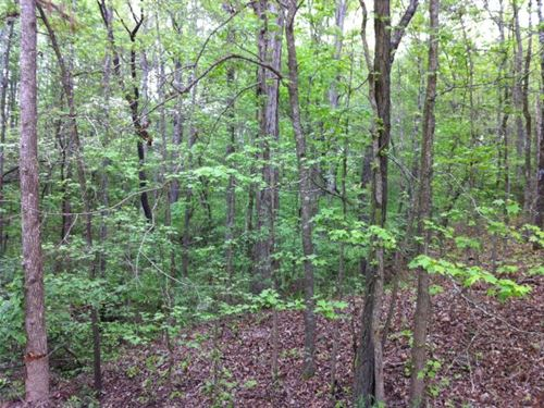 Bear Creek Farms - 2.27 Acre Lot : Mansfield : Jasper County : Georgia
