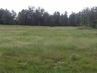 Huck Finn Farms, 5 Acre Lot : Batesburg : Aiken County : South Carolina