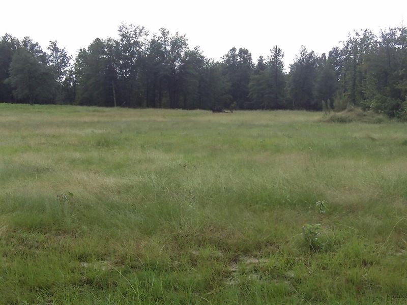 5 acre farm land for sale