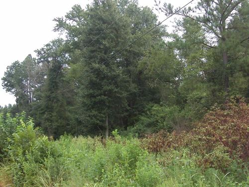 Keysville Farms - 4 Acre Lot : Keysville : Burke County : Georgia