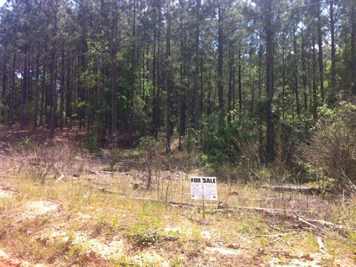 Riverbrooke Plantation - 4.78 Acre : Covington : Newton County : Georgia