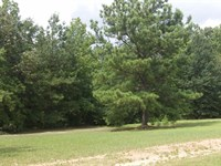 Tussahaw Farms, 7.02 Acre Lot : Locust Grove : Henry County : Georgia