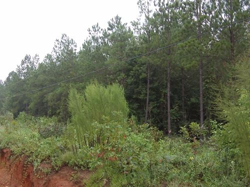 West Augusta Farms, 4.58 Acre Lot : Augusta : Burke County : Georgia