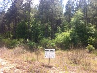 West Fairview Farms, 1.89 Acre Lot : Gray Court : Laurens County : South Carolina