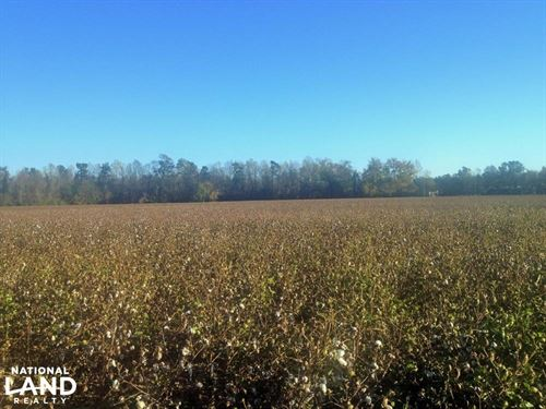 Green Sea Agricultural Homesite : Green Sea : Horry County : South Carolina