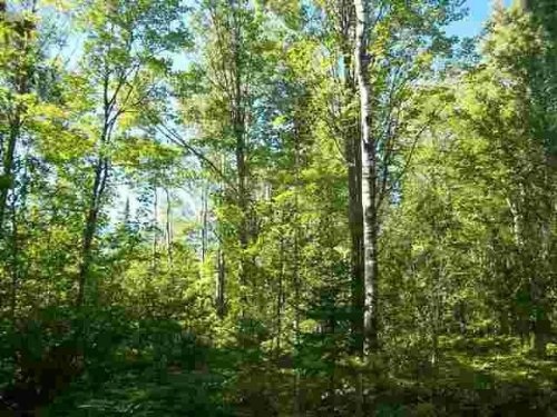 Tbd Karschney Rd, Mls# 1089557 : Lanse : Baraga County : Michigan