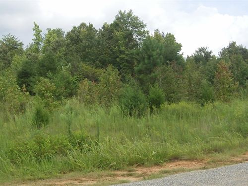 Ivy Plantation, 1.35 Acre Lot : Nicholson : Jackson County : Georgia