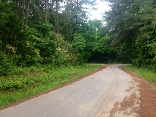Wooded And Secluded : Covington : Newton County : Georgia
