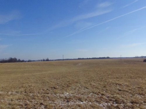 232 Acres Kennel St : Macon : Missouri