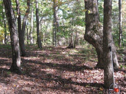Green Bay Acres : Green Bay : Prince Edward County : Virginia