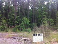 Sarah Hill Estates, 1.60 Acre Lot : Lizella : Crawford County : Georgia