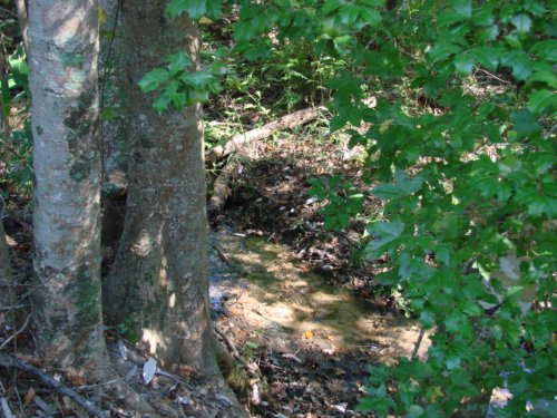 Make An Offer On This Property : Ellaville : Schley County : Georgia