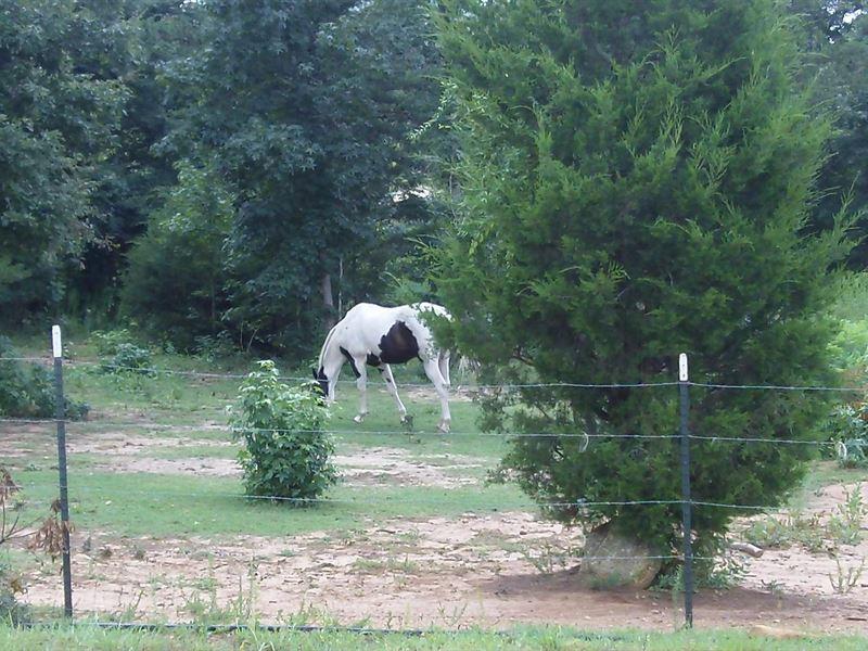 Turkey Creek Farms, 3.17 Acre Lot : Hogansville : Meriwether County : Georgia