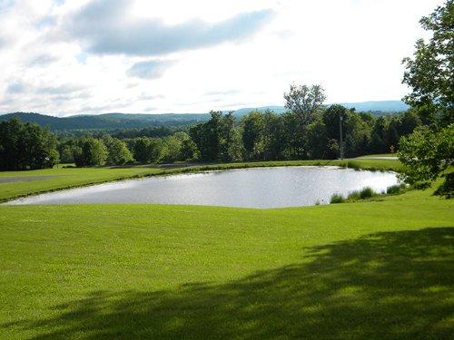 8+ Acres W/ Pond In Finger Lakes : Caroline : Tompkins County : New York