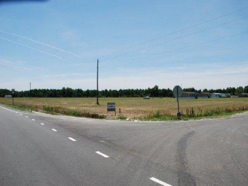 57.5 Acre Farm : Lumberton : Robeson County : North Carolina