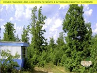 Off Grid Deer Camp : Cabool : Texas County : Missouri