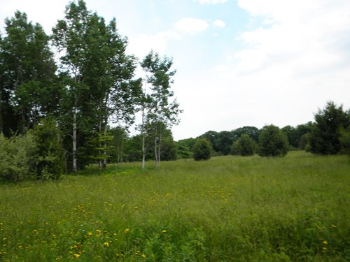 Land Bordering State Forest : Lapeer : Cortland County : New York