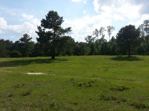 49.5+/- Acres : Marbury : Chilton County : Alabama