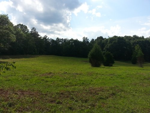 38+/- Acres : Marbury : Chilton County : Alabama