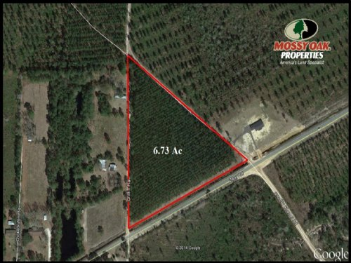 6.73 Ac Land For Sale : Baxley : Appling County : Georgia