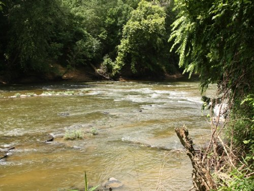 Locust Fork River - 3600 Ft. : Warrior : Jefferson County : Alabama