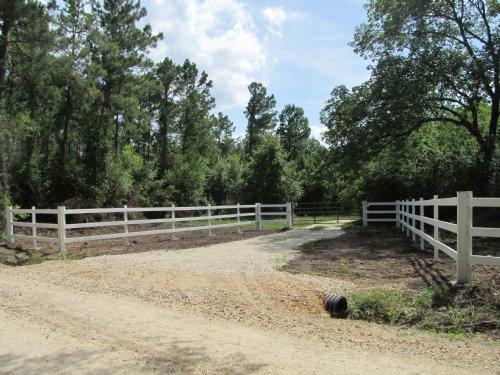 74.81 Acres Of Hunters Paradise : Leggett : Polk County : Texas