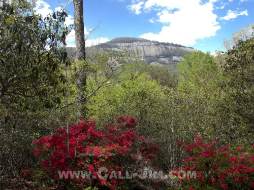 Classic Mountain Retreat Mtn View : Pickens : South Carolina