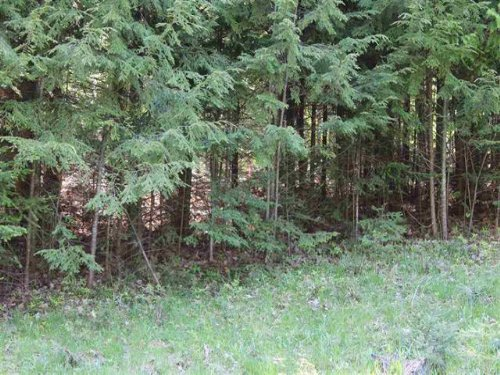 Carmody Rd, Mls 1081573 : Lanse : Baraga County : Michigan