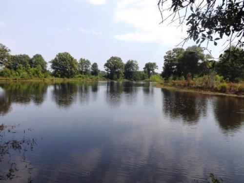 Walden Pond Farm : Register : Bulloch County : Georgia