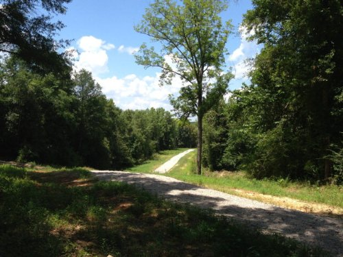 9.68 +/- Acres In The City Limits : Troy : Pike County : Alabama