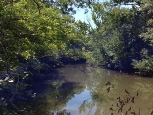 50+/- Acres On Sandy Creek : Dadeville : Tallapoosa County : Alabama