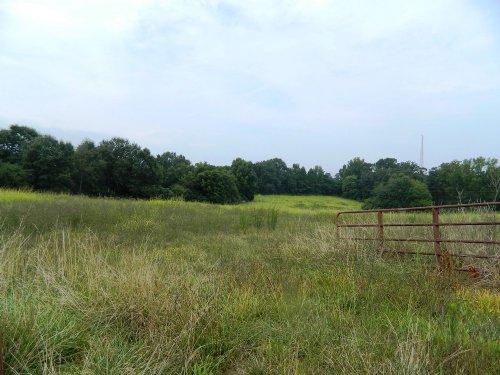 112 Ac Cattle / Horse Farm : Crawford : Oglethorpe County : Georgia