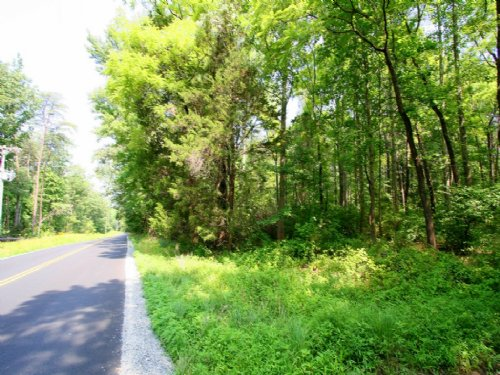 3.78 Acres For Great Homesite : Mineral : Louisa County : Virginia
