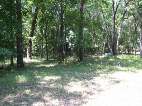 .32 Acre Lot 768652 : Chiefland : Levy County : Florida