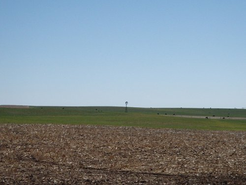 1600+ Acres Irrigated Farm Land : Texline : Dallam County : Texas