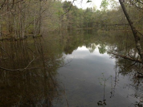 60+/- Acres With Lake : Sequatchie : Marion County : Tennessee