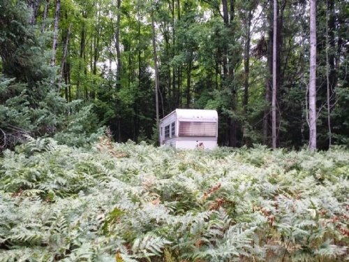 Hunting Property On Lake : Atlanta : Montmorency County : Michigan