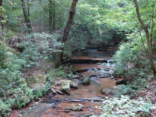 Waterfalls, Woods And Wildlife : Rockford : Coosa County : Alabama