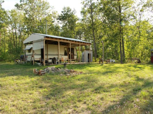 40 Acres Of Hunting : Atlanta : Montmorency County : Michigan